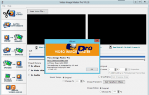 Video Image Master Pro Crack 1.2.8 With Download 2021[Latest]